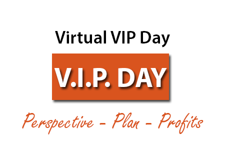 VIP Day Marketing Plan Consulting