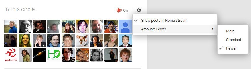 Manage how much content you see from your Google Plus Circles