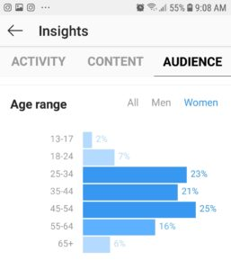 Instagram audience stats